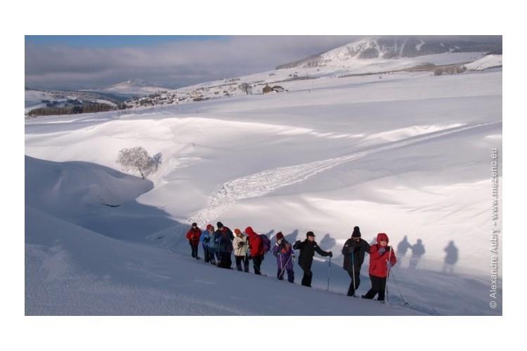Rando Raquettes Sucs du Mezenc et Mont Gerbier de Jonc